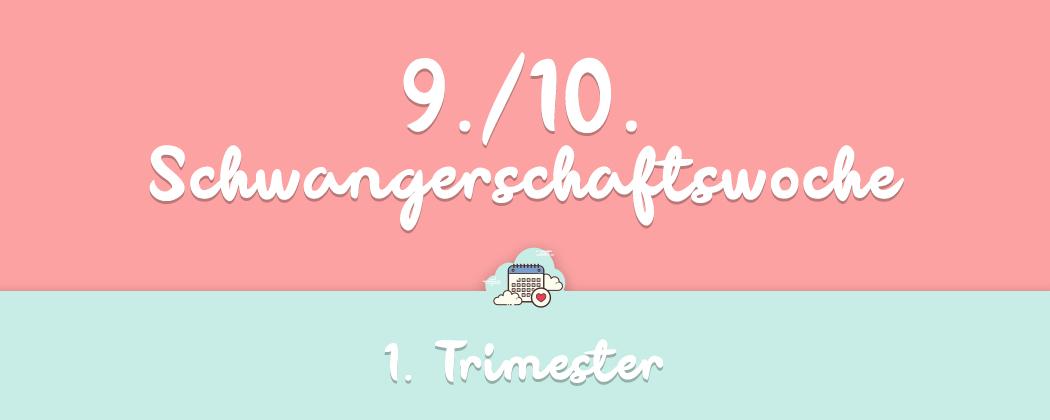 Banner: 9./10. Schwangerschaftswoche