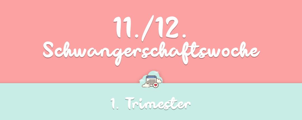 Banner: 11./12. Schwangerschaftswoche