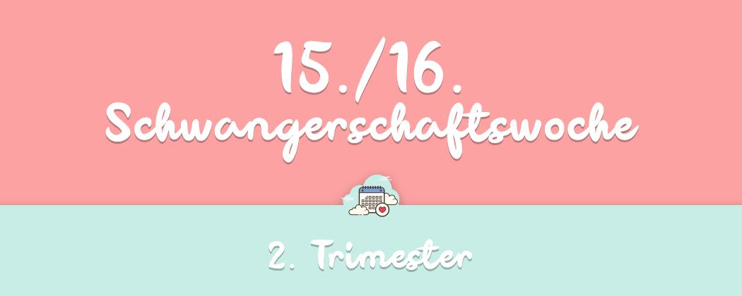 Banner: 15./16. Schwangerschaftswoche