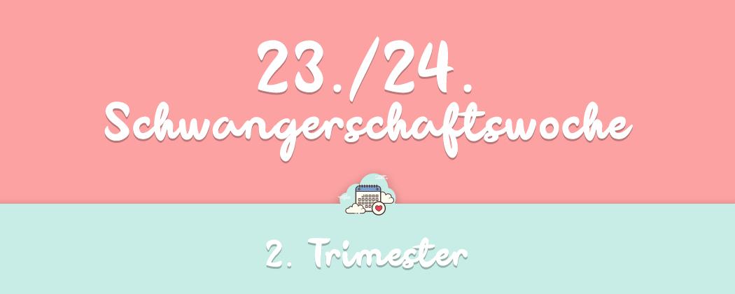 Banner: 23./24. Schwangerschaftswoche