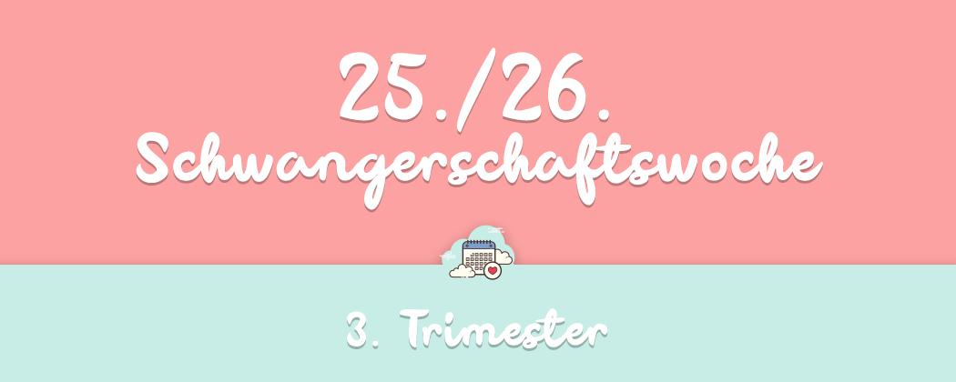 Banner: 25./26. Schwangerschaftswoche