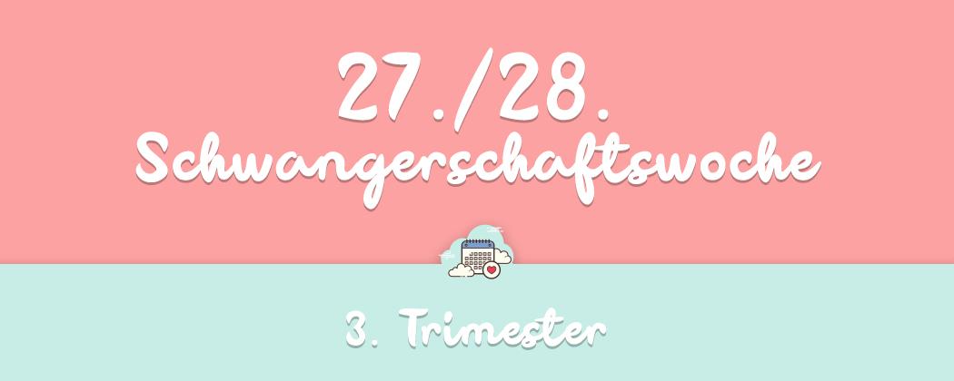 Banner: 27./28. Schwangerschaftswoche