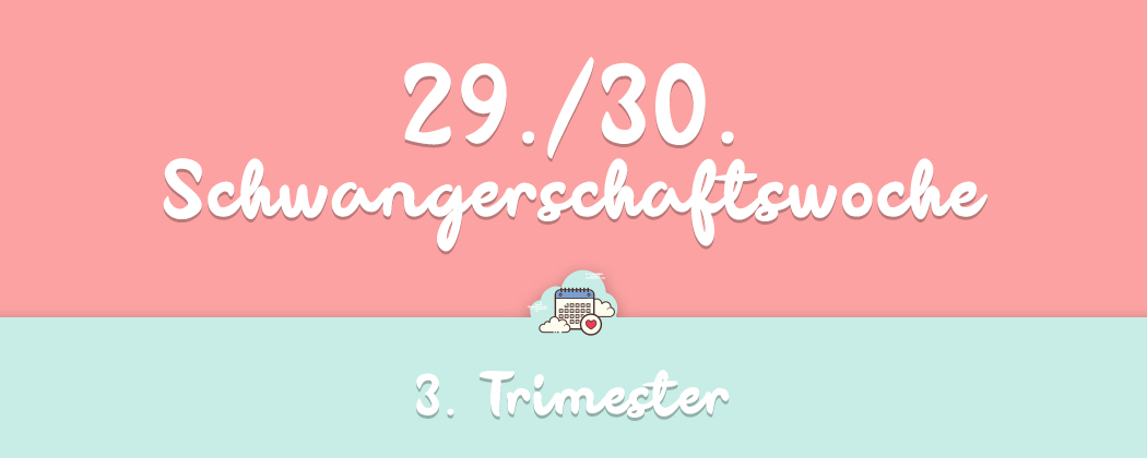 Banner: 29./30. Schwangerschaftswoche