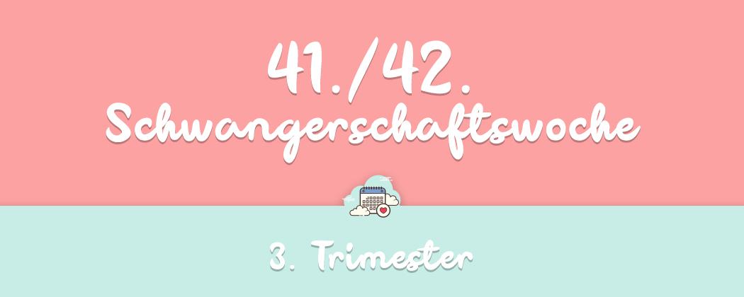 Banner: 41./42.  Schwangerschaftswoche