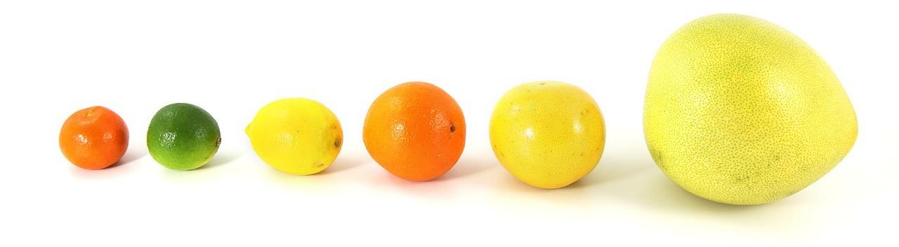 Pomelo und andere Zitrusfrüchte im Vergleich