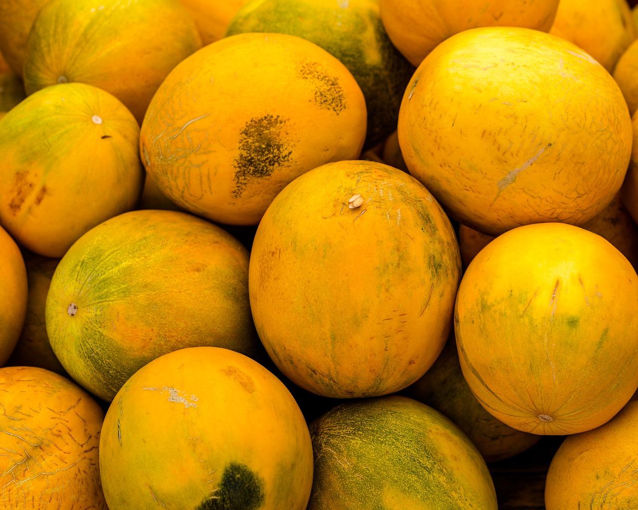 Melonen, Fötusvergleich 33./34. Schwangerschaftswoche
