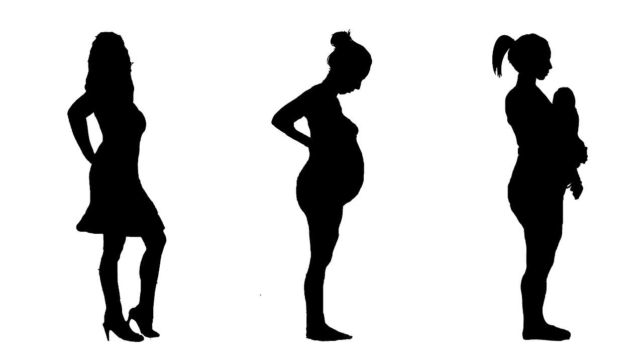 schwangerschaftphasen 19./20. Schwangerschaftswoche