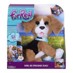 sprechender Beagle in der Verpackung