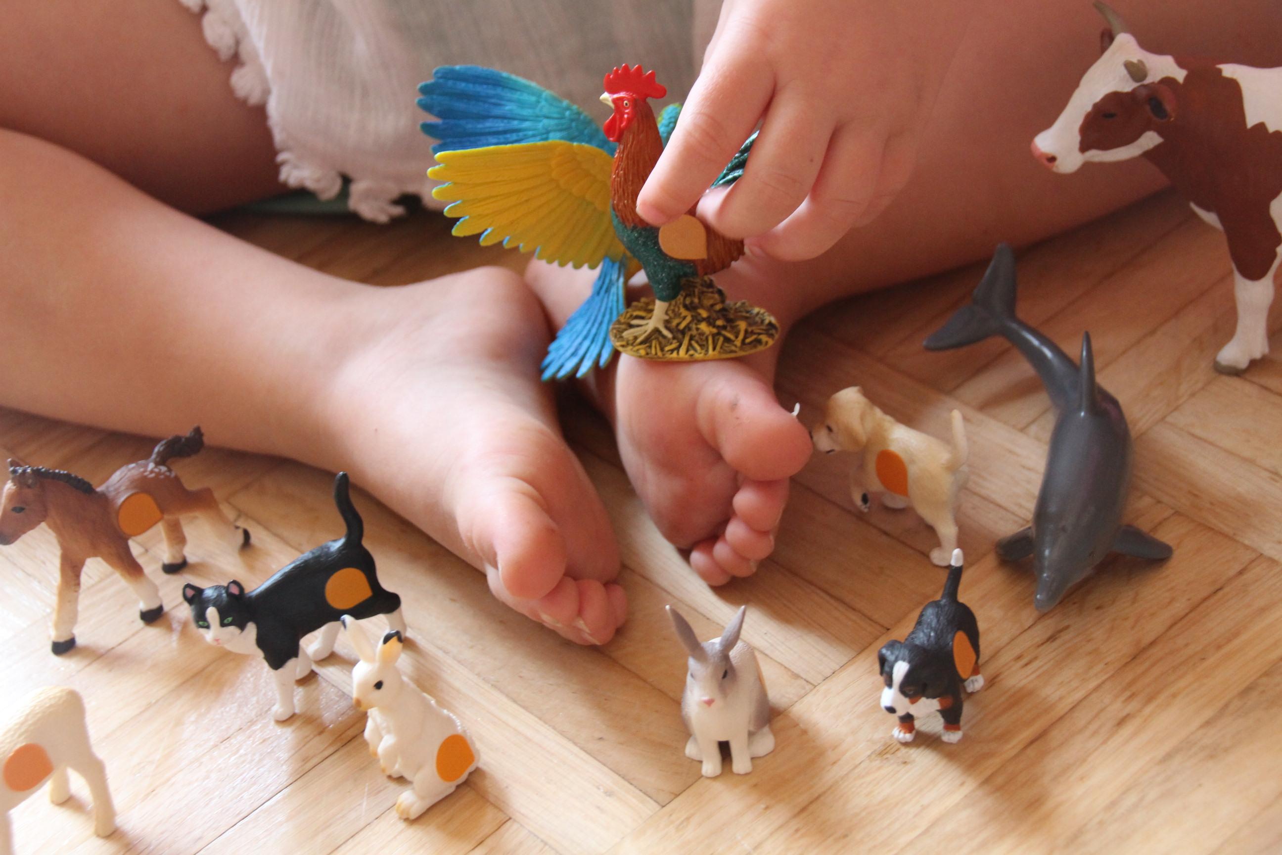Tiptoi Spielzeug