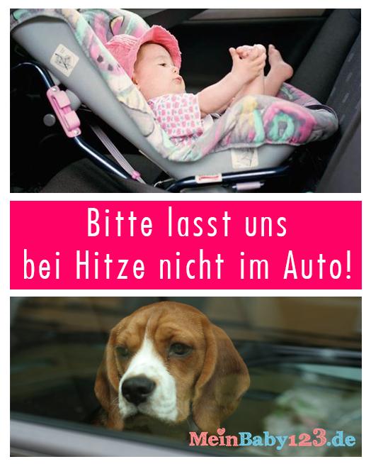 Baby und Hund im Auto