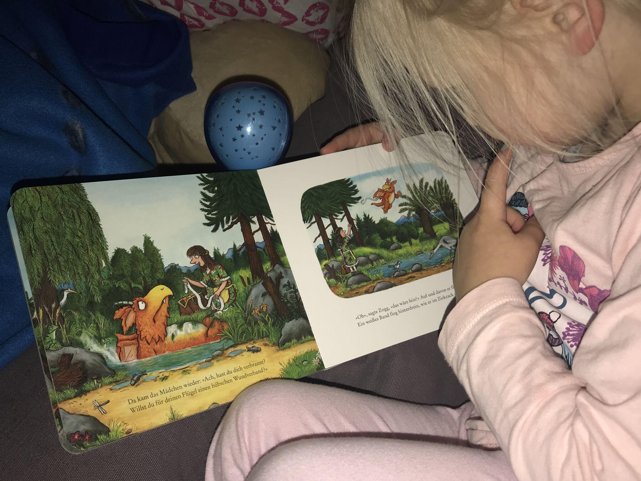 Kind liest Zogg Buch