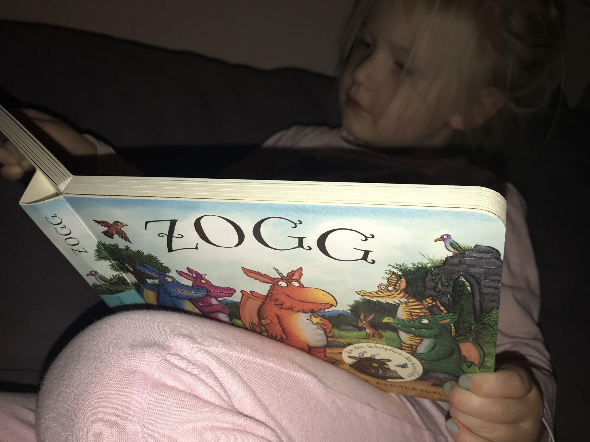 Kind liest im Zogg Buch