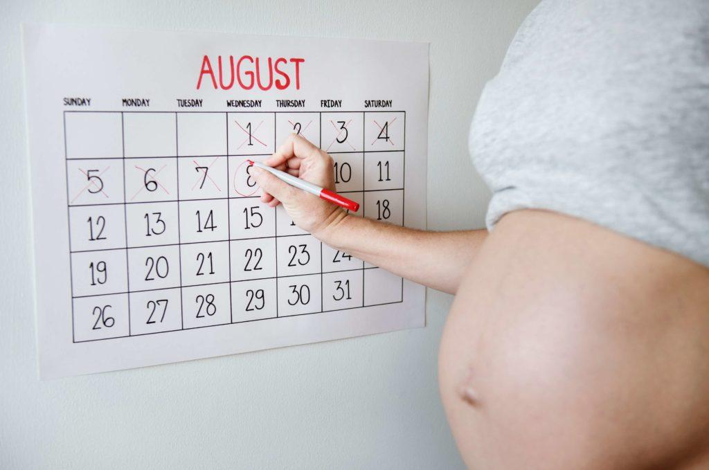 Schwangere mit Kalender