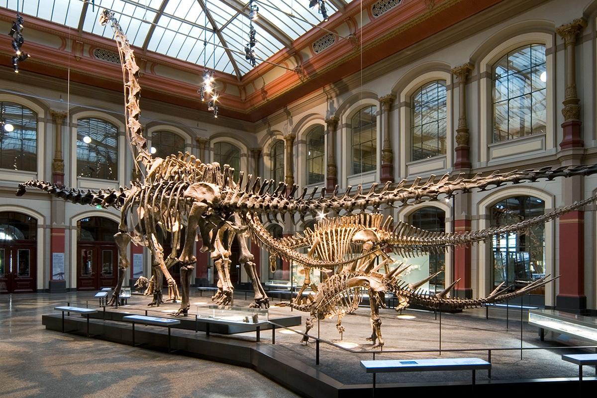 Dinosaurierwelt