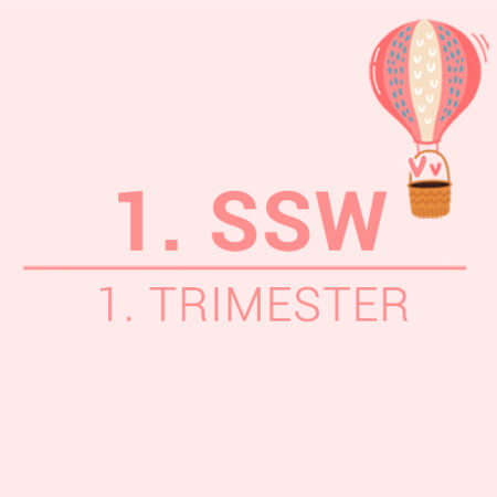 1. SSW Beitragsbild