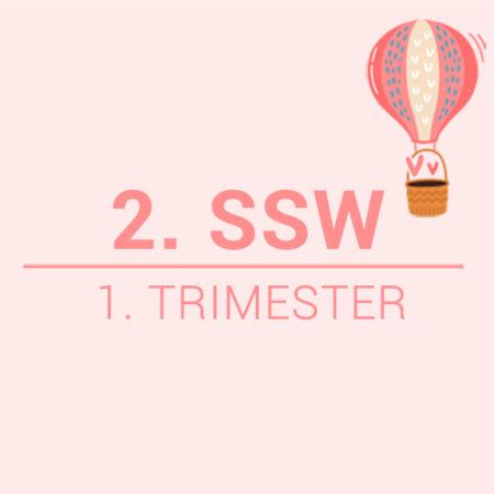 2. SSW Beitragsbild
