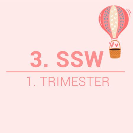3. SSW Beitragsbild