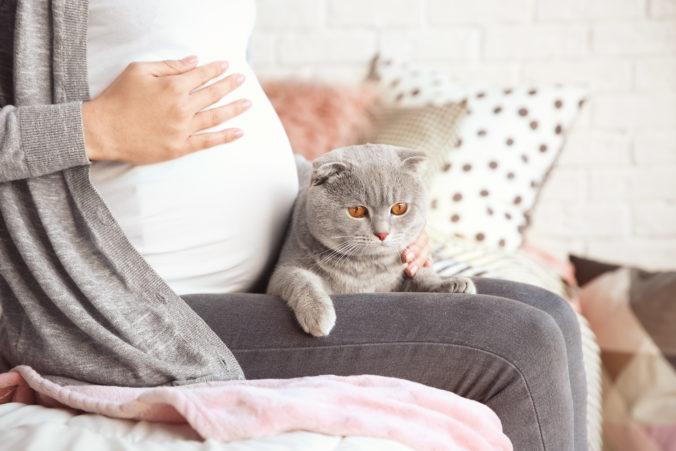 Schwangere streichelt Katze