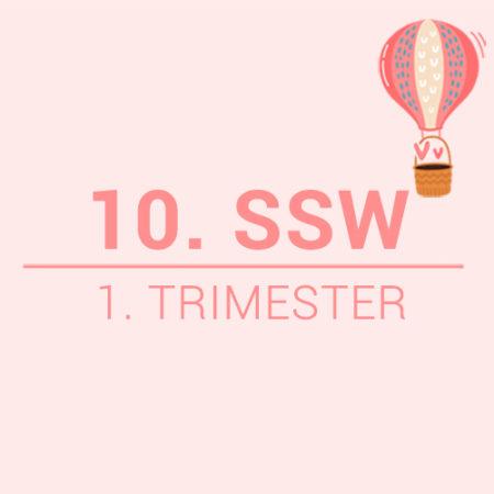 10. SSW Beitragsbild