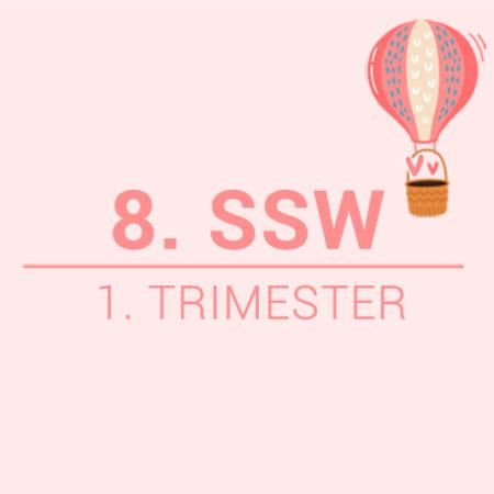 Die 8. SSW Beitragsbild