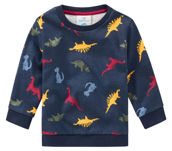 Dino Pullover für Jungen