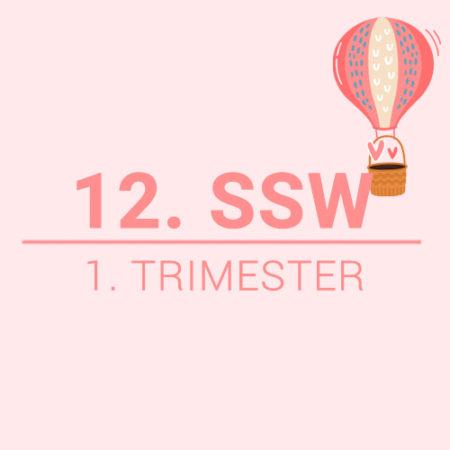 12. SSW Beitragsbild