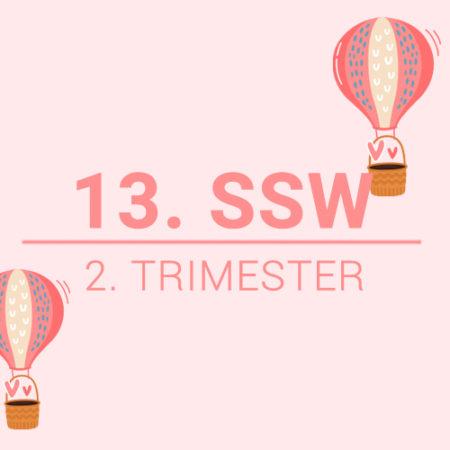 13. SSW Beitragsbild