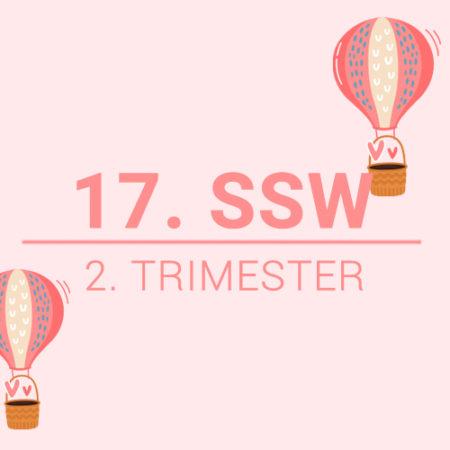 17. SSW
