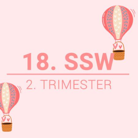 18. SSW