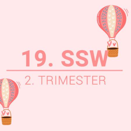 19. SSW