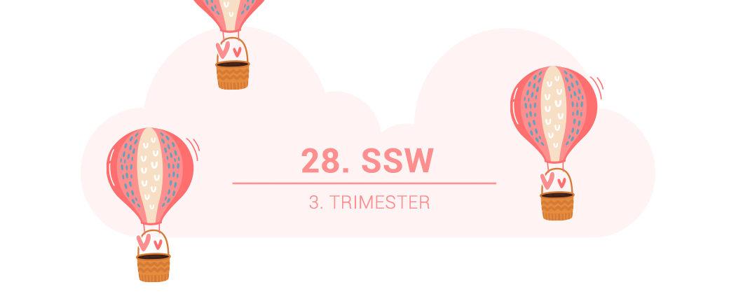 Banner: 28. SSW – die 28. Schwangerschaftswoche