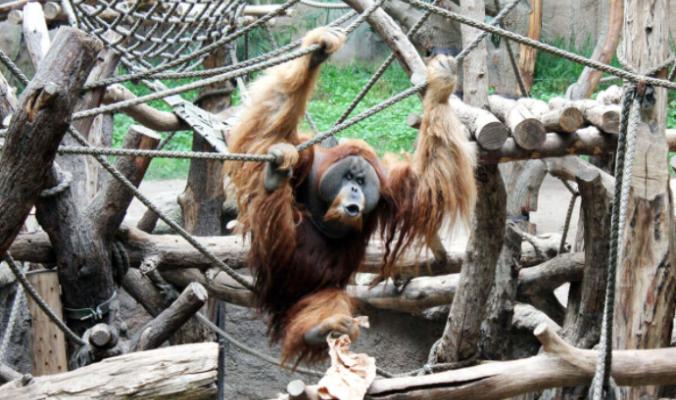 Der Zoo Leipzig
